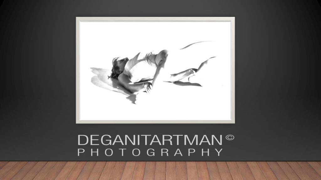 deganit-artman-dance-card